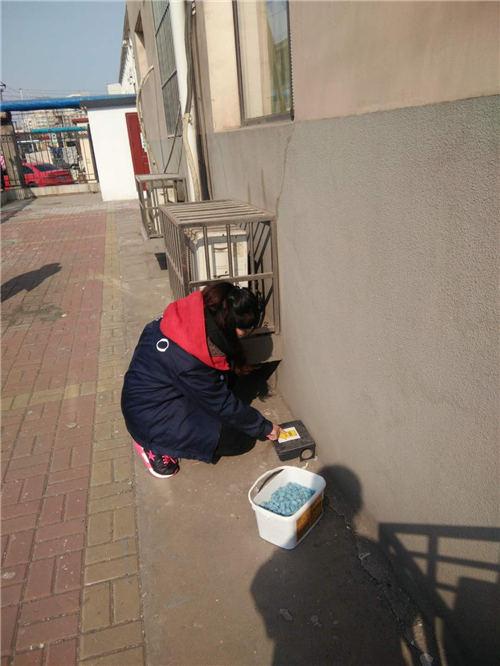 天津除鼠服务人员