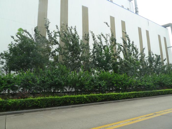 天津私家园林景观设计