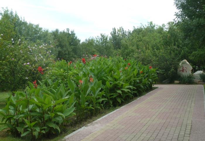 天津园林绿化公司施工