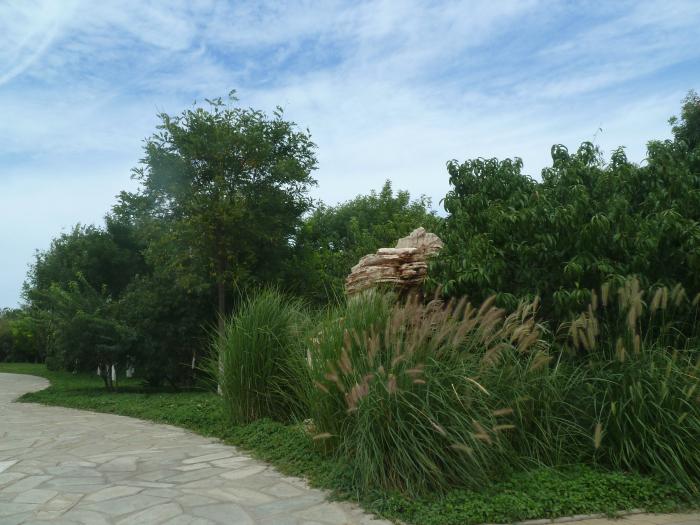 天津绿化施工单位