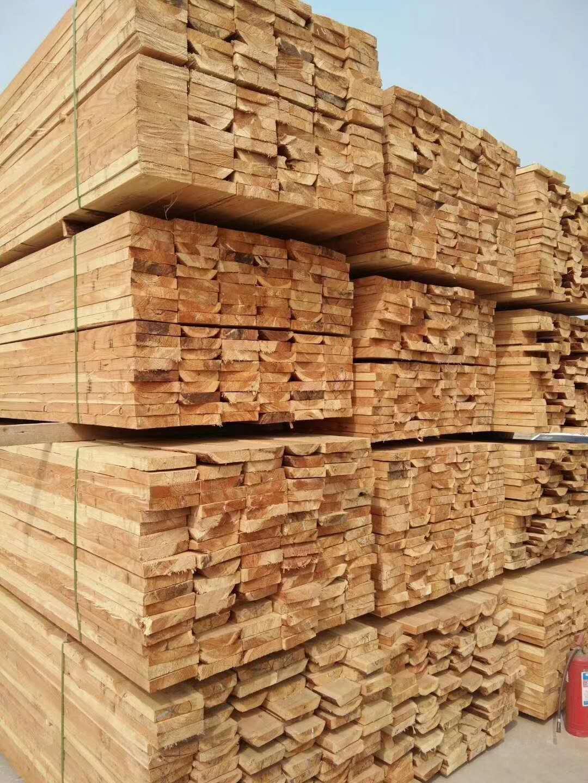 天津建筑木方銷售廠家
